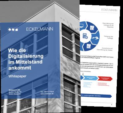 whitepaper-eckelmann